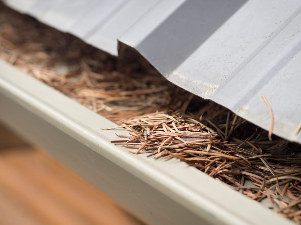 Anthony's Windows & Gutters: Service Image-3