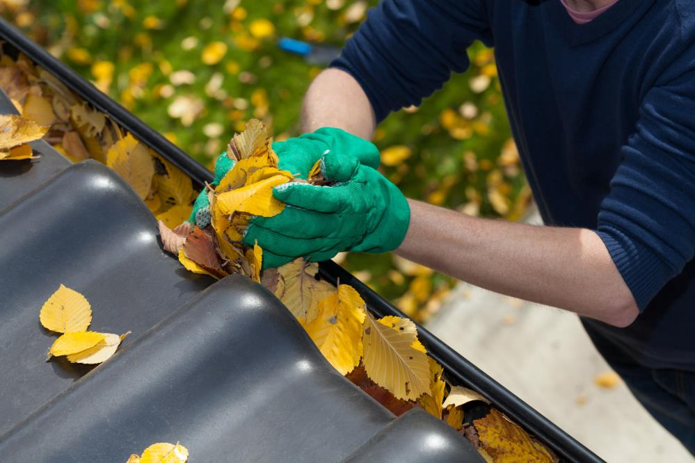 Anthony's Windows & Gutters: Service Image-4