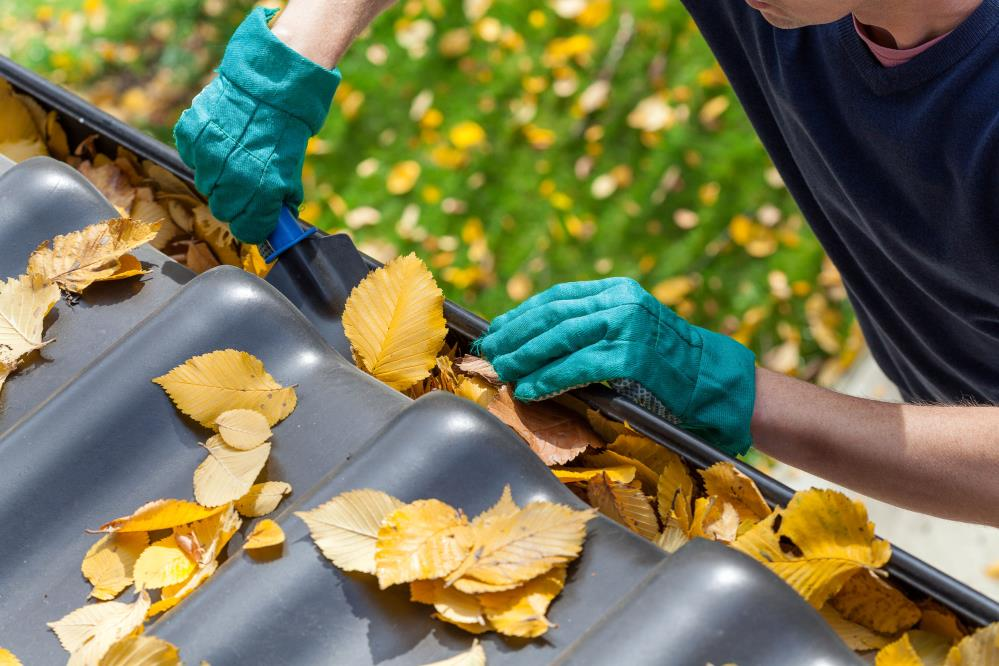 Anthony's Windows & Gutters: Service Image-0